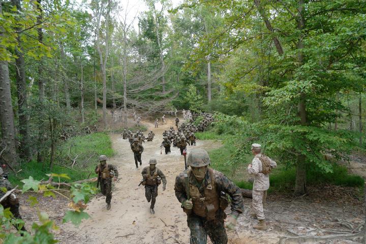 Delta Co. Conducts Combat Course